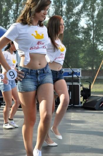 Miniatura zdjęcia: Galeria V Wybory Miss Lubska 2011_DSC_0288.JPG