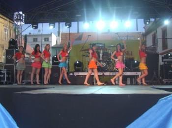 Miniatura zdjęcia: IV Wybory Miss Lubska 2010_DSCF4745.JPG