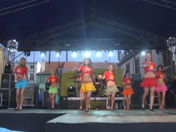 Miniatura zdjęcia: IV Wybory Miss Lubska 2010_DSCF4750.JPG