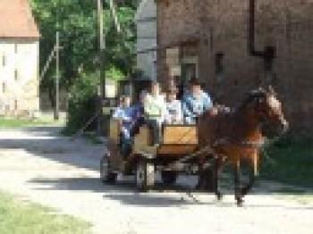 Miniatura zdjęcia: DZIECI EUROPY>Osiek City< 27.06.07_osiekDSCF627314.JPG