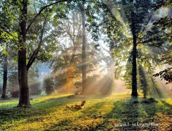 Miniatura zdjęcia: 02.11.-30.11.2015 Wystawa fotografii Krzysztofa Kiliana LUSTRZANE & ŚWIATŁO_021.jpg
